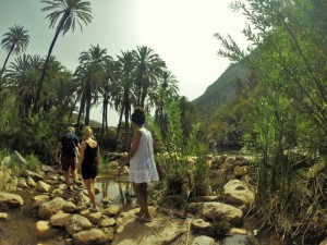 trip to paradise valley