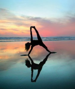 this is why yogi's are the best surfers  yoga surf and
