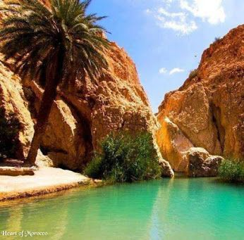 Paradise valley - nature morocco