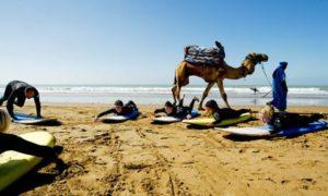 last minute surfcamp